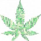 Cannabinoïd-hyperemesis: braken, misselijkheid en buikpijn