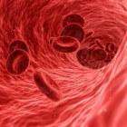 De geschiedenis van antistolling (bloedverdunners)