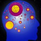 Ziekte van Kufs: Neurodegeneratieve aandoening