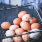 Maculadegeneratie: Luteïneverrijkte eieren remmen oogziekte