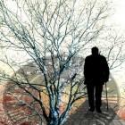 Dementie en arteriosclerose in de hersenen