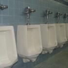 Warme branderige plas: waarom voelt mijn urine vreemd aan?