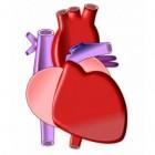 Cardiogene shock: Onvoldoende bloed door hartschade
