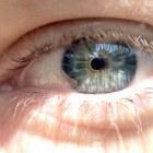 Schnyder kristallijn corneadystrofie in de ogen
