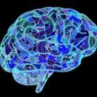 Gerstmann-Sträussler-Scheinker-syndroom: Hersenziekte
