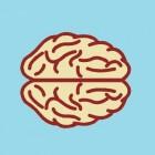 Hersenaandoeningen: symptomen diverse soorten herzenziekten