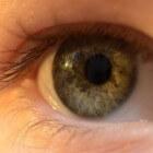 Mucormycose (agressieve schimmelinfectie) in oog (oogkas)
