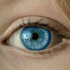 Trillend ooglid: symptomen, oorzaak, behandeling en zelfzorg