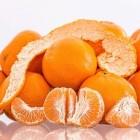 Vitamine C-deficiëntie: Tekort aan vitamine C