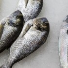 Scombroid visvergiftiging: Symptomen na eten besmette vis