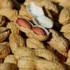 Pinda-allergie: Allergische reactie op pindanoten