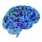 CADASIL: Hersenaandoening met beroerte en migraine