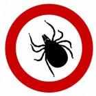 Tekenziekten: Door tekenbeten overgedragen infecties