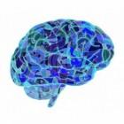Glioblastoom: Agressieve hersentumor (kanker aan hersenen)