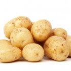 Aardappelallergie of intolerantie voor aardappel