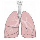 Longontsteking: symptomen, oorzaken, behandeling en prognose