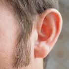 De oren van het menselijke lichaam