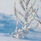 Winterdepressie of winterdip voorkomen & behandelen: tips