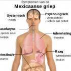 Mexicaanse griep: Grieppandemie + Maatregelen