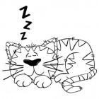 Gezondheid: Snurken