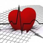 Hoe werkt ons hart?