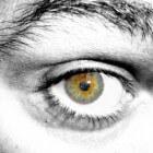 Trillend ooglid: ongewone afleidende beweging bij het oog