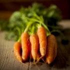 Hutspot eten om beter te zien: invloed vitamine A wortelen