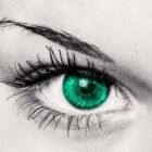 Luteïne: goed voor de ogen, kan maculadegeneratie voorkomen