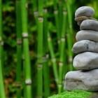 Bamboe-extract: goed voor collageen, kraakbeen en botten