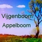 Keltische Boom Astrologie 6