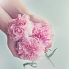Beauty: handverzorging in enkele minuten