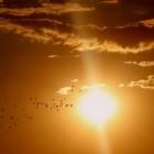 Beauty: Met een gezonde huid de zon in