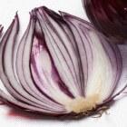 Dieet en uien, uien zorgen voor minder vetcellen