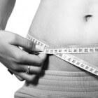 Kosten van afvallen met Weight Watchers