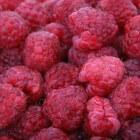 Het beperkt FODMAP-dieet voor prikkelbare darmen