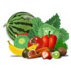Plantaardig dieet: voordelen van onbewerkt plantaardig eten