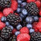 Paleo dieet: eten wat men in de oertijd at