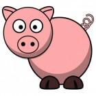 Hoe gezond is varkensvlees?
