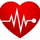 hartslag afvallen