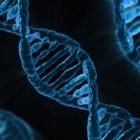Gentherapie, behandeling van afwijkende genen
