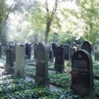 Sterven: euthanasie - Joodse visie