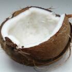 Kokosolie: uit kokosnotenvruchtvlees en het gebruik