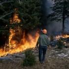 Ingesloten door bosbrand of heidevuur – hoe overleef je het?