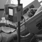Als verpleegkundige het slaapwaakritme observeren