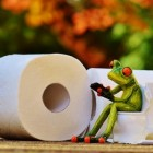 Gezondheid: Toiletgewoontes