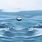 Een lekker watertje