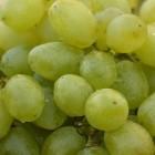 De voedingswaarde van druiven