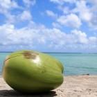Coco Juice van Dr. Martins: gezonde kokosdrank