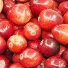 De geneeskracht van veenbes of cranberry