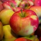 Hoe gezond en lekker is de Jonagold appel?